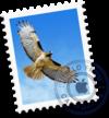 version_100_mail_logo